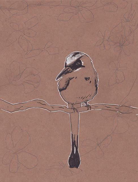 Sketchcrawl bird