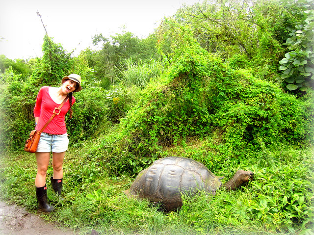 Kerri with a tortoise in the Galapagos Islands