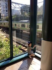 YGPで電車を見る (2012/10/21)