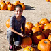 Citrus Heights Pumpkin Farm