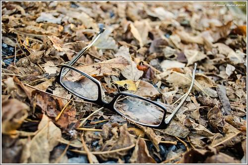 autumn missingglasses d5100 harlansburgpa gmazz