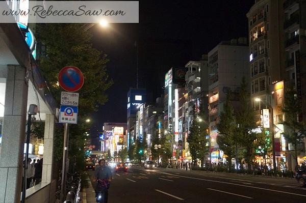 apan day 2 - Ueno, Tokyo station, akihabara-127