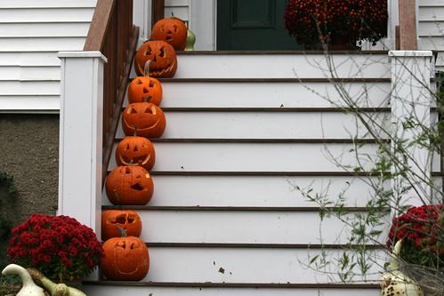 pumpkin 048