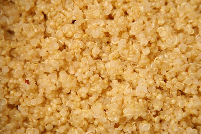 quinoa cakes 1