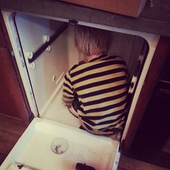 The family engineer fixing the dishwasher.
