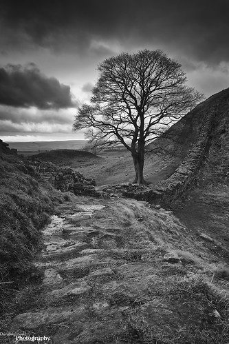 Path To The Gap by Dave Brightwell
