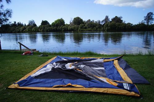 bellinger river camping