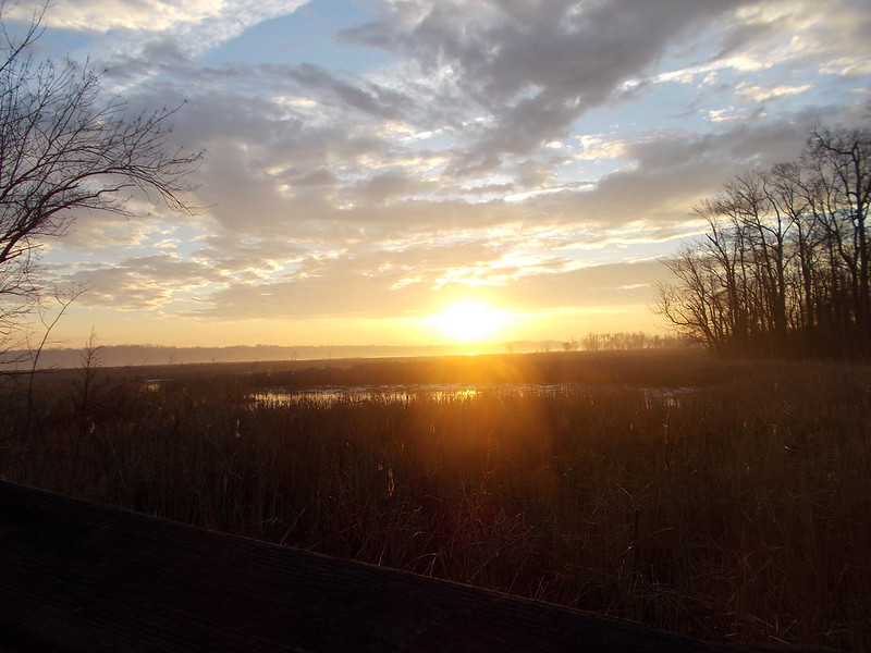 Dyke Marsh Sunrise