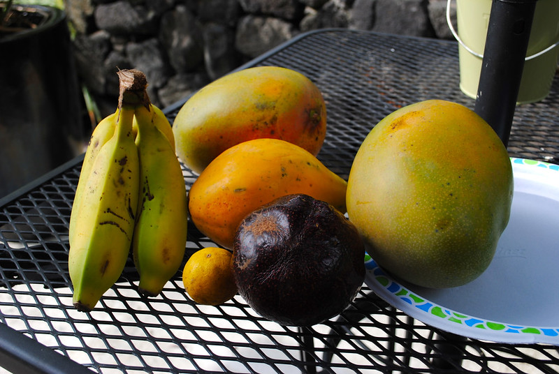 Fresh Hawaiian Fruit