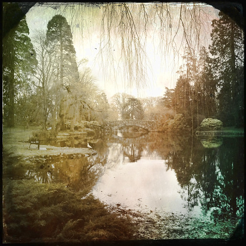 pond noflash beaconhillpark makebeautiful hipstamatic buckhorsth1lens ctypeplatefilm