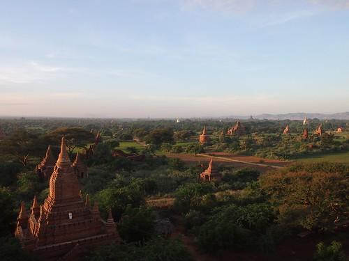 Bagan-371