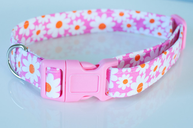 Pink and flowery dog collar