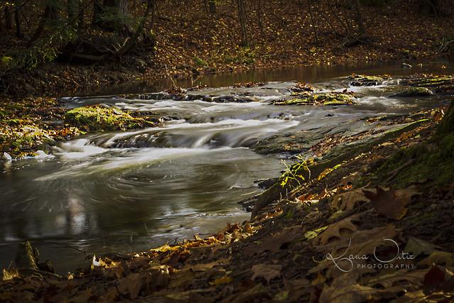 Creek at Schodack Town Park | Flickr - Photo Sharing!schodack town