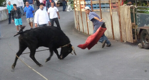 Capinha Carlos 5