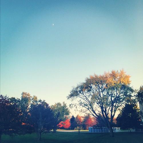 My Moonrise Kingdom
