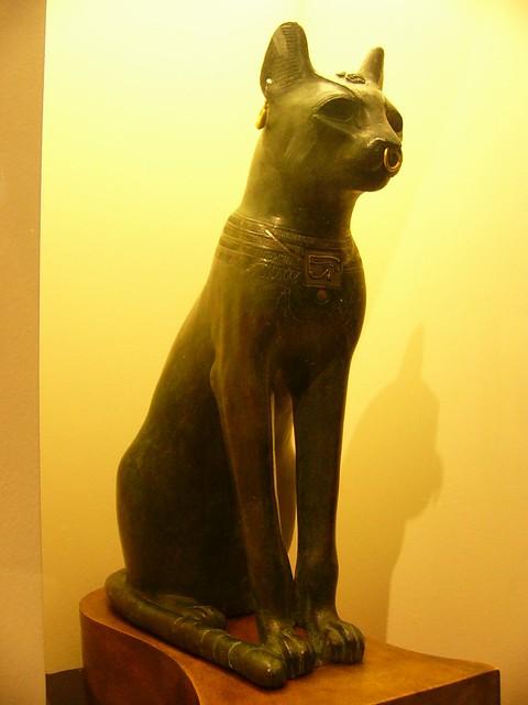 egypt10cat