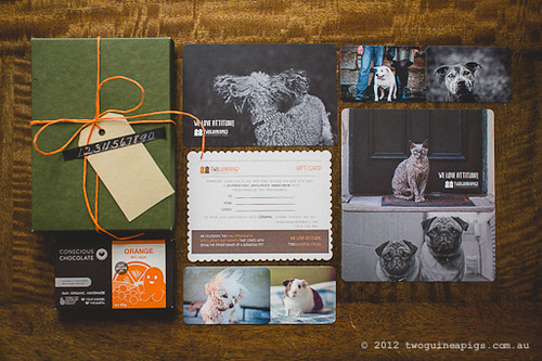 twoguineapigs pet photography gift card; christmas, festive and summer special for loved ones.