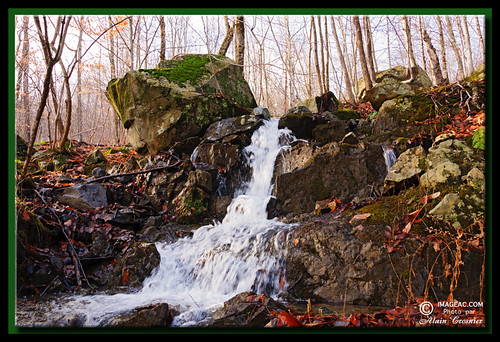 tree water forest spring eau foret arbre printemps chute roche owlshead rockwater mansonville alaincrosnier imageaccom n4504905w7217546 fallgeotagged