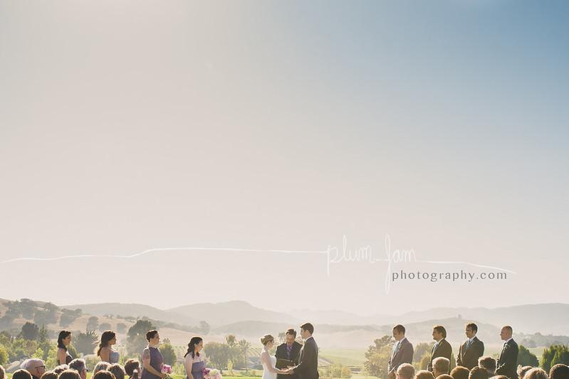 PlumJamPhotography_JessicaTyler07