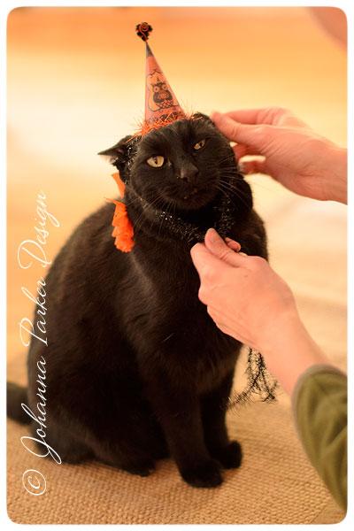 Halloween-Jack-Ears-Back