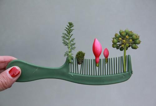 comb garden