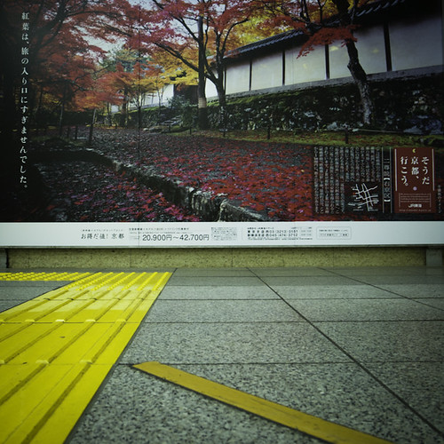 Yellow Road Leads to Autumn in Nihonbashi Station