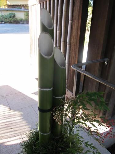 Hakone Japanese Gardens, Saratoga, CA, bamboo IMG_2286