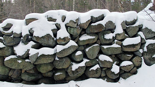 Stone walls and cellar holes remind us of the hard lives of settlers in northern New England. (photo: Russ Cobb)