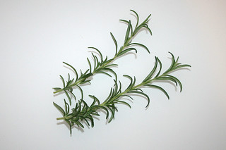 03 - Zutat Rosmarin / Ingredient rosemary