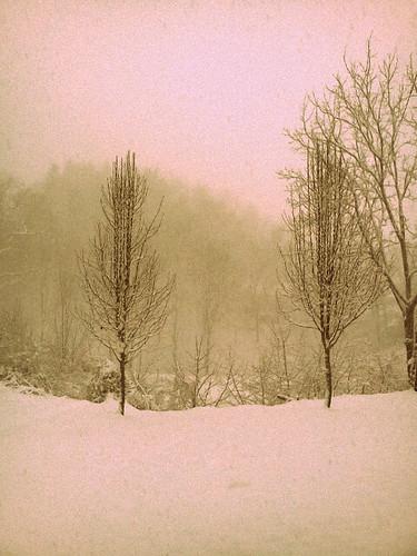 snowjanuary2013picone