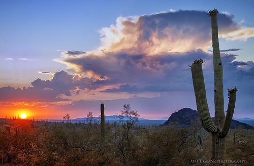 statepark sunset arizona cactus phoenix clouds landscape desert tucson monsoon picachopeak