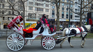 Festive Carriage