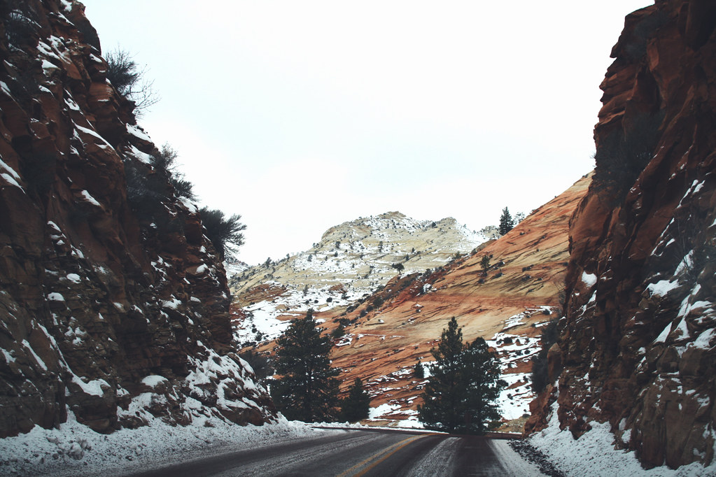 driving in zion