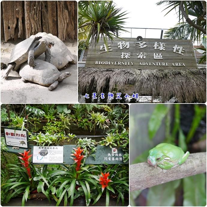 15 生物多樣性探索區