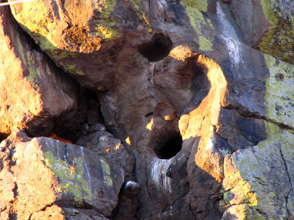 Hole in the Rock Nest