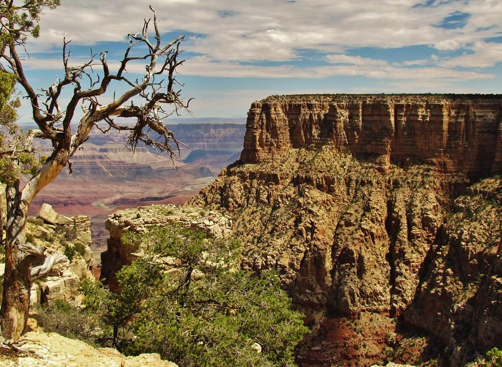 Elevation Of Grand Canyon North Rim Lodge Arizona 67 North Rim Az