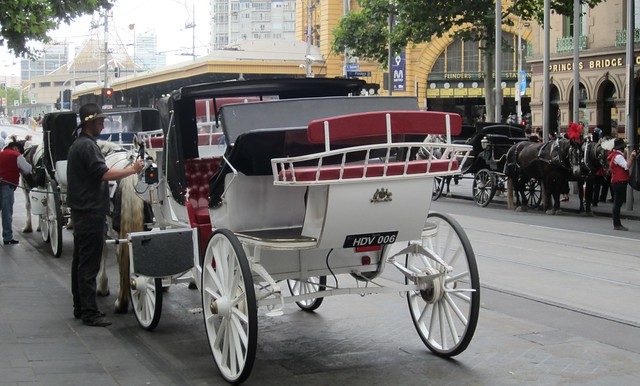 Horse Drawn Vehicle number plate