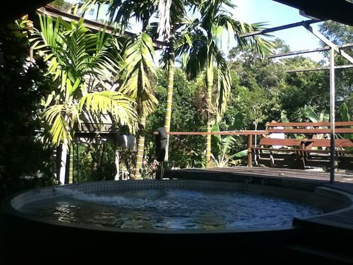 Treetops Jungle Lodge