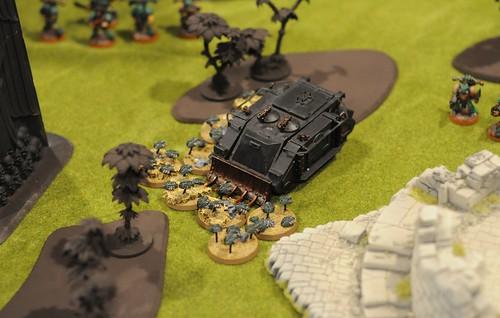 Scarabs swarm a rhino