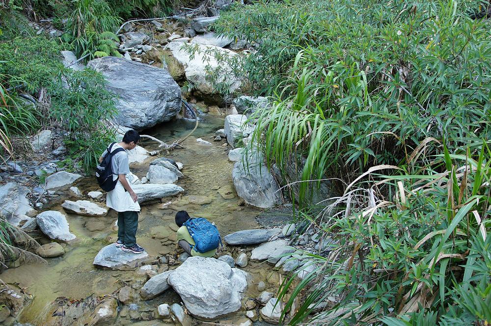 綠水步道-030