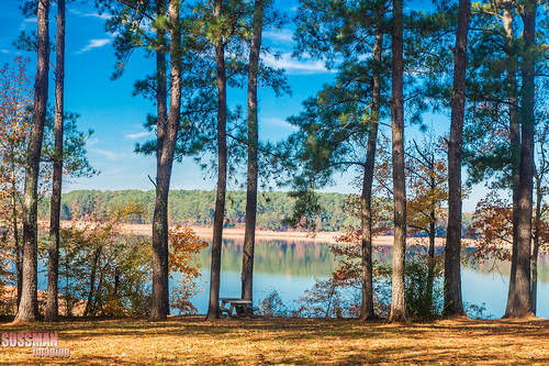 autumn trees lake reflection fall nature water georgia landscape fallcolors westpoint troupcounty westpointlake thesussman sonyalphadslra550 sussmanimaging
