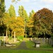 Autumn in Brockley Cemetery 6