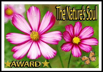 NaturesSoulAward-2