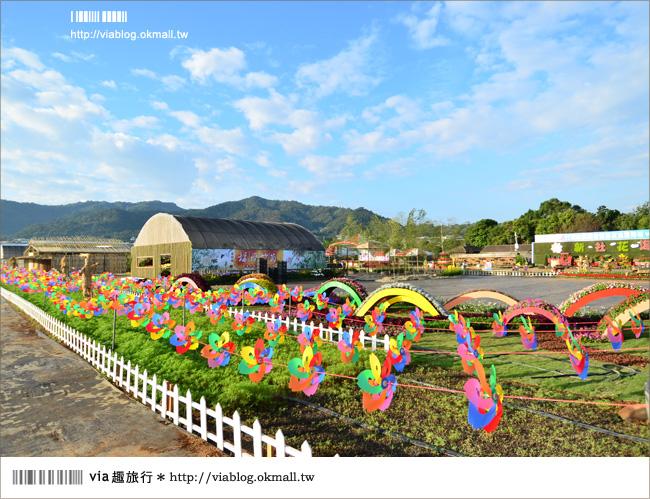 【新社花海2012】2012新社花海節活動介紹及交通資訊8-8