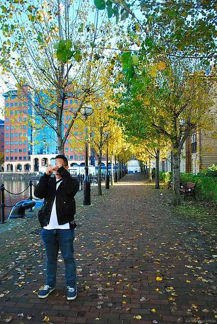 autumn, manchester, 2012, fall, season, scenery, photography, mediacityuk, salford quays, north west england, united kingdom, leaves, trees, autumn in manchester,