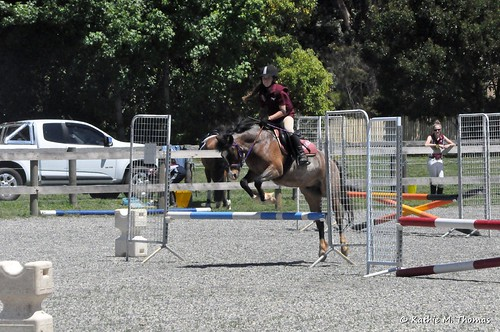 Horse Eventing