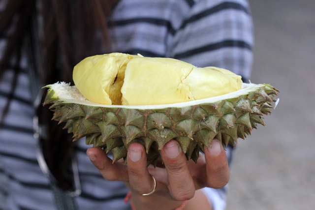 Monthong durian at the fruit buffet