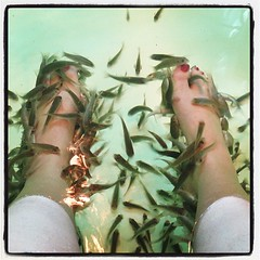 This is happening. Do you see that 'Dr. Fish' in between my toes? DO YOU SEE IT??