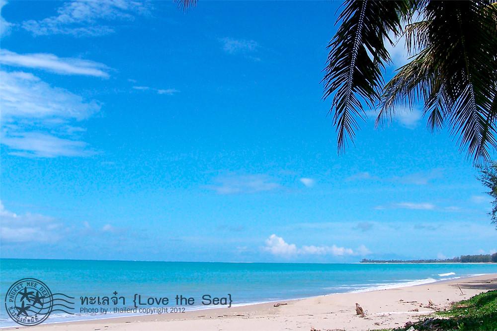 Love the Sea