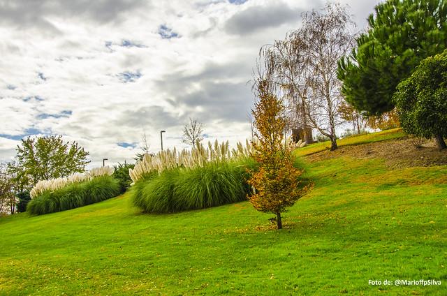 Foto Parque Juan Carlos I - LXXVIII